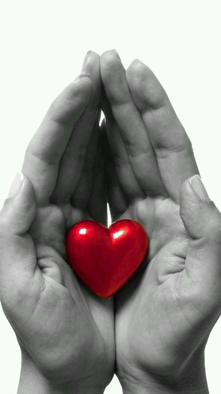 Картинки сердечко в ладошках
